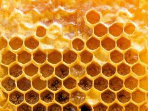 fagure miere